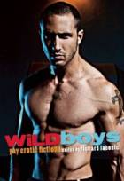Wild Boys: Gay Erotic Fiction